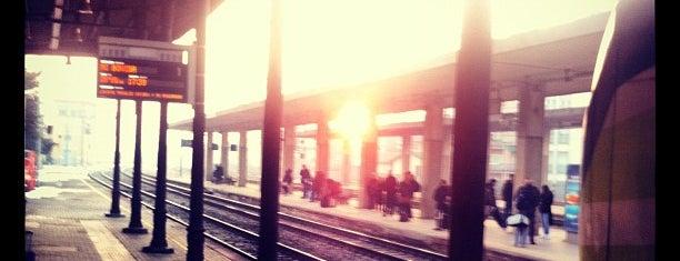 Stazione Pavia is one of Pavia: luoghi utili.