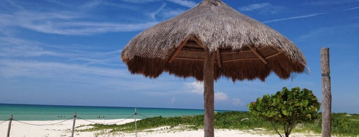 Playa de Sisal is one of Turisteando.