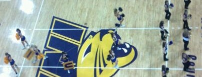 McLeod Center is one of NCAA Division I Basketball Arenas/Venues.