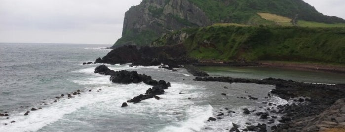 Seongsan Ilchulbong is one of Jeju Island.