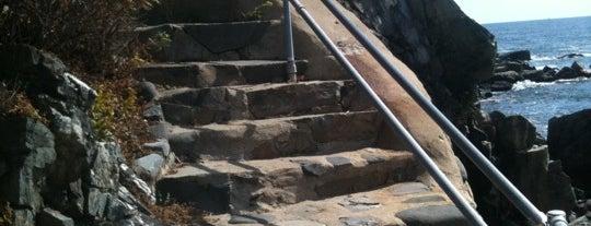 Cliff Walk is one of Posti salvati di Stephanie.