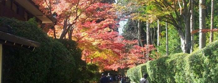 高野山 壇上伽藍 is one of World heritage - KOYASAN.