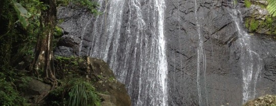 La Coca Falls is one of Puerto Rico.