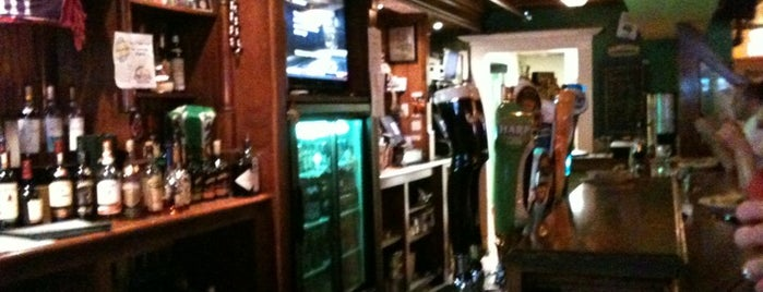 The Harp & Celt Restaurant & Irish Pub is one of Orlando Bachelor Party.