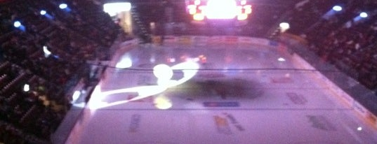 WFCU Centre is one of OHL Arenas.