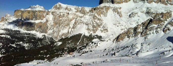 Pardatsch / Predazzo is one of Dove sciare.