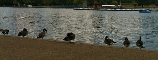The Serpentine is one of Relax in London.