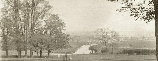 Historic Sites in Harringay