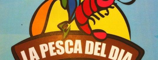 La Pesca Del Día is one of Mérida Restaurant Week.