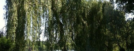 Parcul Herăstrău is one of Guide to Bucureşti's best spots.