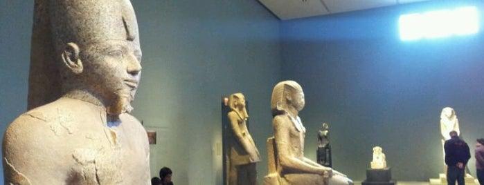 The Metropolitan Museum of Art is one of Art Gallery, Art Museum.