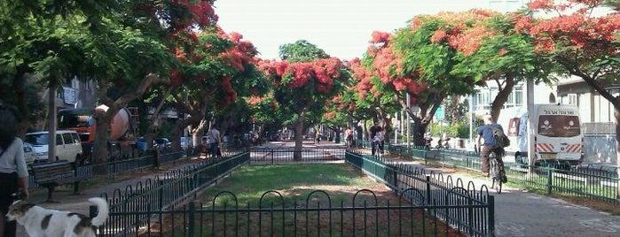 Rothschild Boulevard is one of We Love Tel Aviv!  #4sqCities.