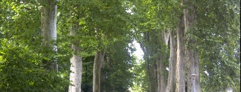 Parc de l'Orangerie is one of Strasbourg.