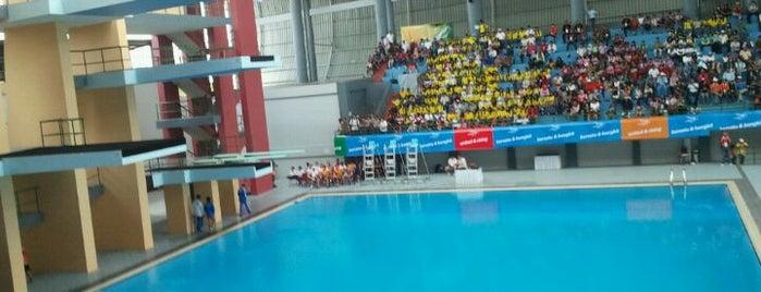 Jakabaring Aquatic Stadium is one of badger.