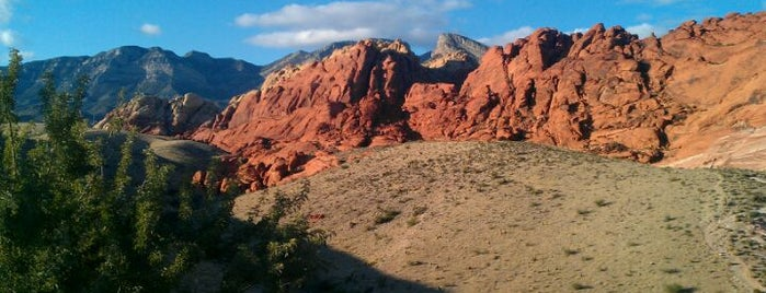 Red Rock Canyon National Conservation Area is one of Tempat yang Disukai Ricardo.
