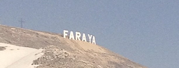 Faraya is one of Bierut بيروت.