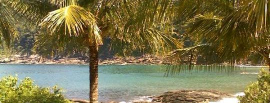 Praia De Calhetas is one of สถานที่ที่ André Luiz ถูกใจ.