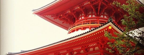 高野山 根本大塔 is one of World heritage - KOYASAN.