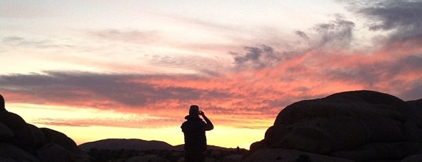 Jumbo Rocks Campground is one of Twerksgiving.