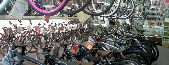 Rudy's Schwinn Cycle & Fitness is one of I been here.