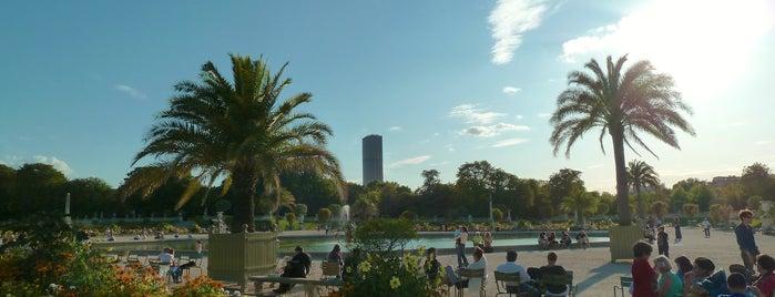 Jardín de Luxemburgo is one of things to do in Paris.