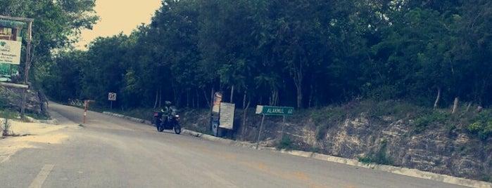 Puerta Calakmul is one of Edu 님이 좋아한 장소.