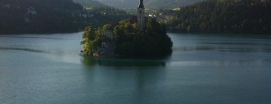 Paviljon & Kavarna Belvedere is one of Bled.