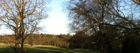 St. Ives Estate (Country Park) is one of Dog Walking Spots in Yorkshire.