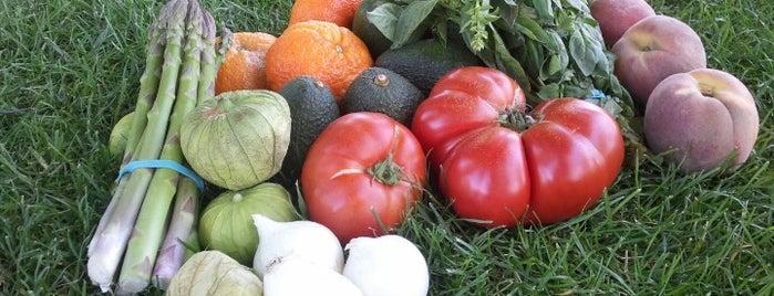 Templeton Farmers' Market is one of SLO County Top Spots.
