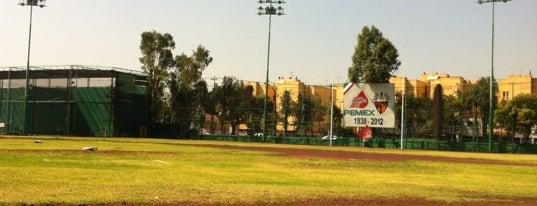 Parque De Beisbol De Pemex is one of Robertoさんのお気に入りスポット.