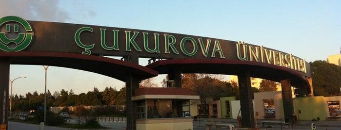 Çukurova Üniversitesi is one of En çok check-inli mekanlar.