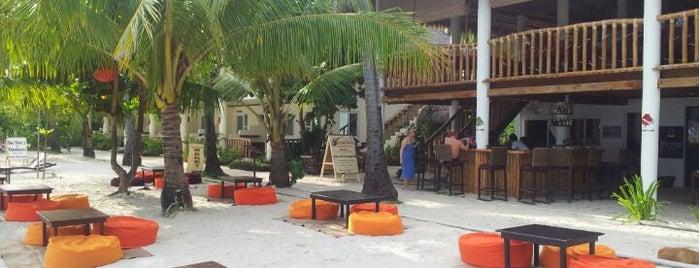 Ocean Vida Beach Resort is one of Cebu 101.