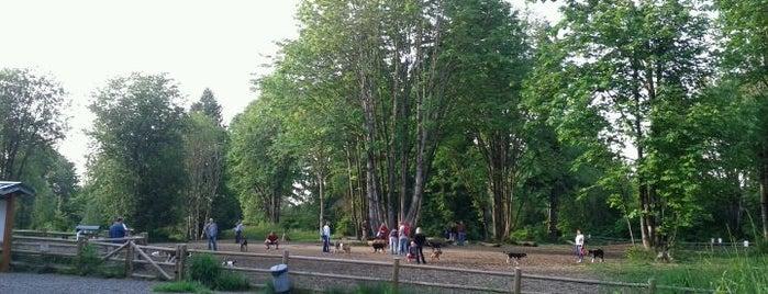 Willis Tucker Dog Park is one of Dog Parks.