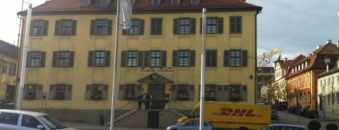 Waldhorn am Schloss is one of สถานที่ที่ Steffen ถูกใจ.