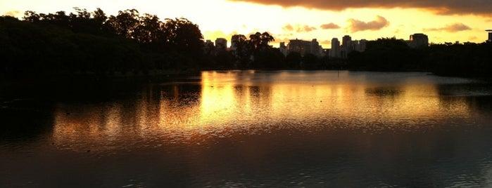 Парк Ибирапуэра is one of Lugares legais.