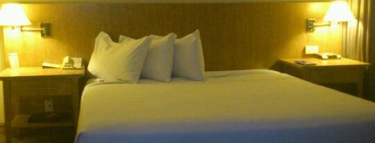 TRYP São Paulo Berrini Hotel is one of สถานที่ที่ Adriane ถูกใจ.