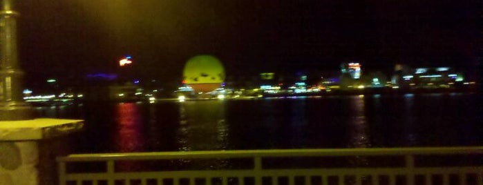 Disney Springs The Landing is one of My vacation @Orlando.