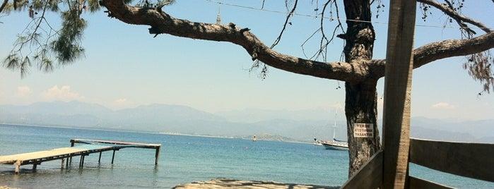 Büyük Samanlı Koyu is one of Cennet ve İlçeleri.