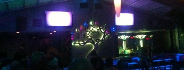 Ozio Restaurant & Lounge is one of Happy Hour.