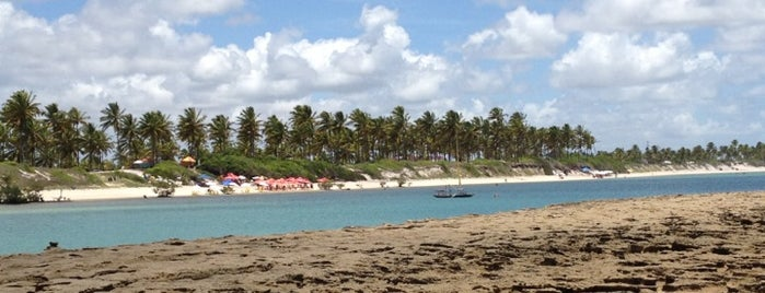 Praia de Muro Alto is one of Turismo - Recife.