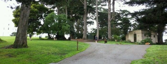 Alamo Square Dog Park is one of Lugares favoritos de Simon.