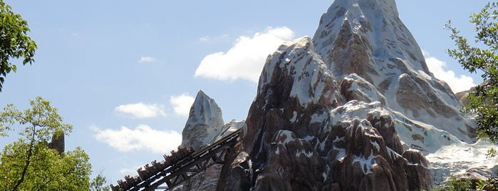 Expedition Everest is one of Things I've seen or done.