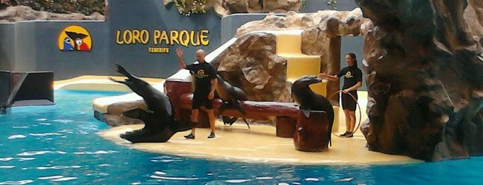 Loro Parque is one of HOLIDAY · Places I've been.
