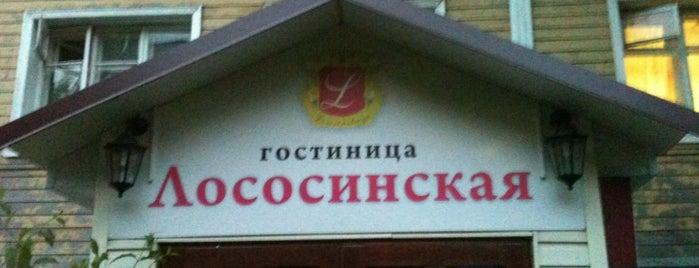 "Гостиница ""Лососинская"" / Lososinskaya Hotel is one of Петрозаводск."