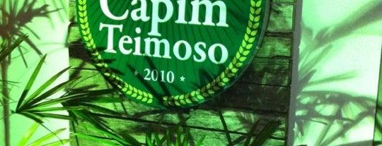 Capim Teimoso is one of Restaurantes que quero ir.