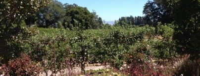 Merry Edwards Winery is one of Sonoma County.