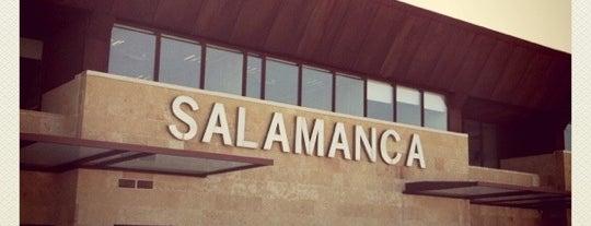 Aeropuerto de Salamanca-Matacán (SLM) is one of Airports in SPAIN.
