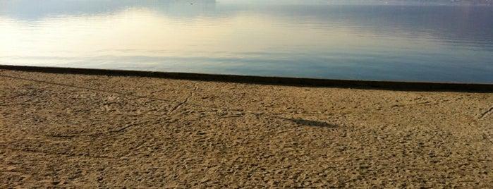 Spiaggia d'Ispra is one of Road trip 2016.