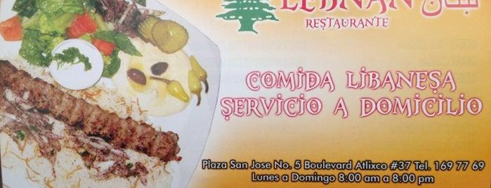Lebnan Restaurante is one of Posti salvati di Rodrigo.