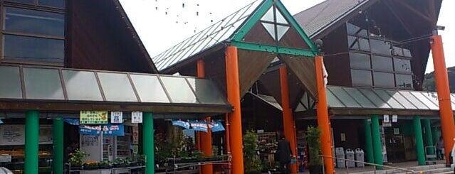 道の駅 樋脇 is one of Lugares favoritos de Shigeo.
